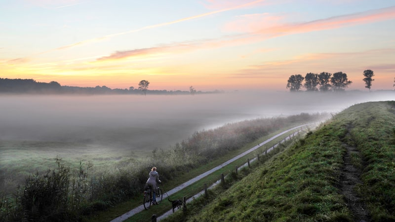 Nebel am Morgen (c) Holstein Tourismus u. Photocompany